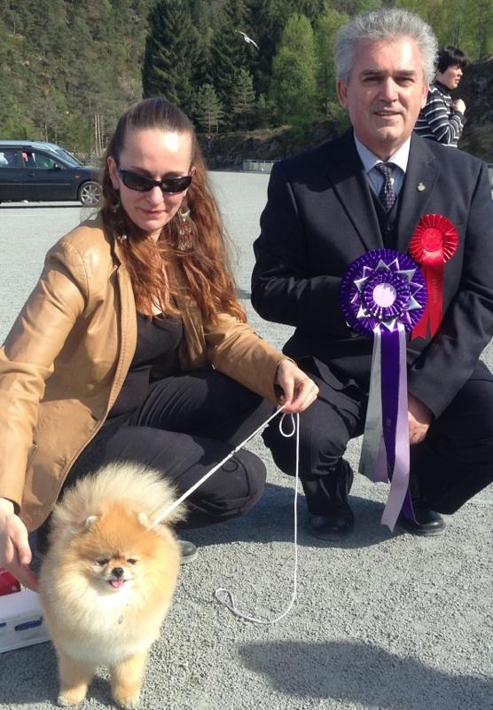 Bella klein´s Pomeranian with Cristian Petre Stavarache