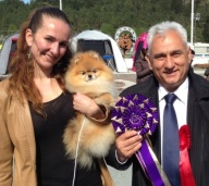 Bella klein´s Pomeranian with Savicic Nebojsa