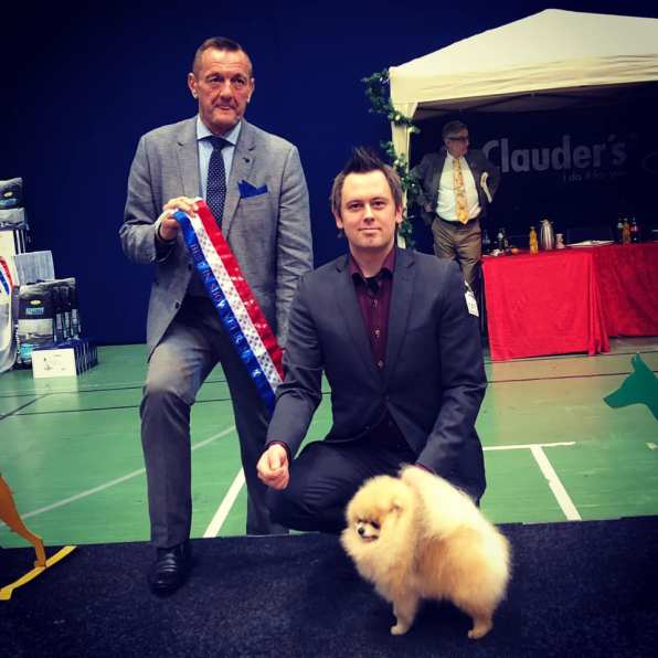 Best in show pomeranian